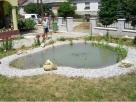 Kerti tó és tónövények - Révfülöp - kertépítés képek