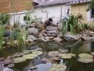 Csobogó a kerti tóban - Badacsonytomaj - kertépítés képek