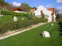Gyepszőnyeg a kertben